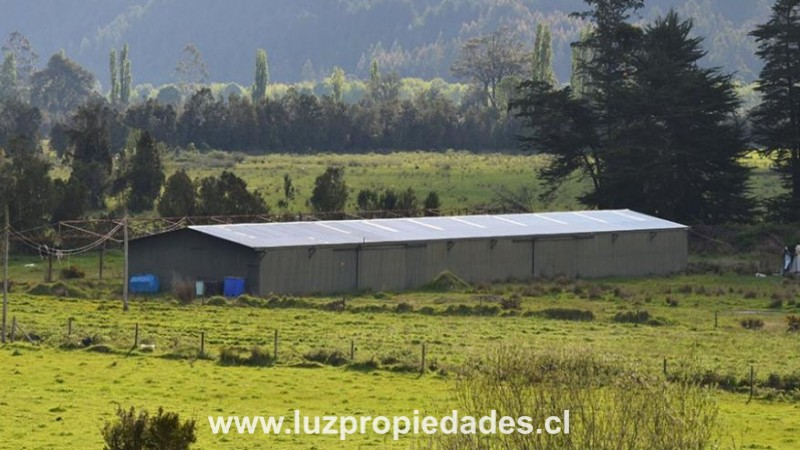 Chamiza/Automó km 5 - Luz Propiedades