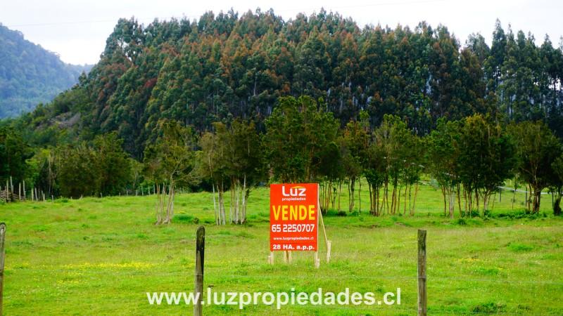 Km 23,5, sector Quillaipe, Carretera Austral - Luz Propiedades