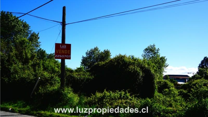 Serrano  N° 51-53 - Luz Propiedades