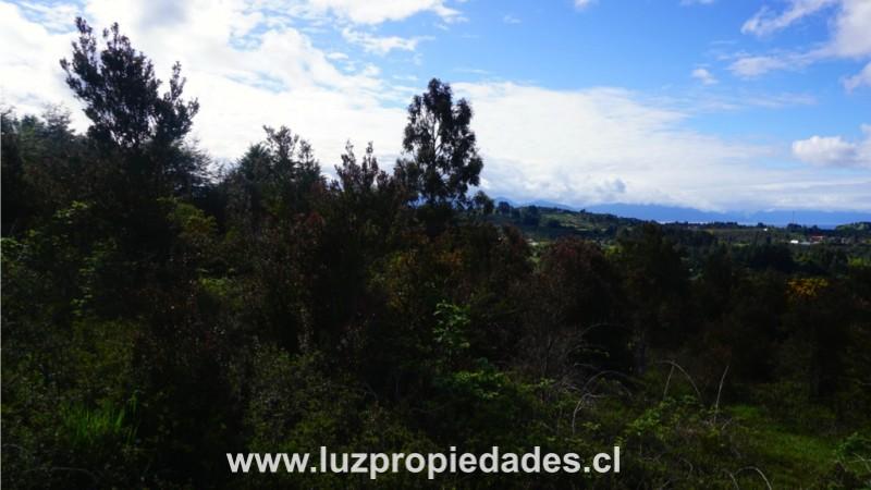 Villa Calfurray s/n, Pelluco Alto - Luz Propiedades